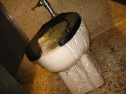 overflowing+toilet